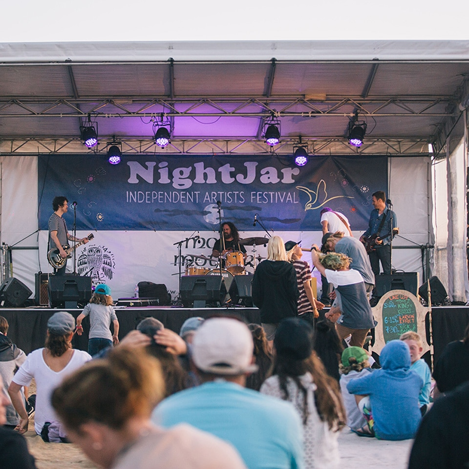 nightjar-9968